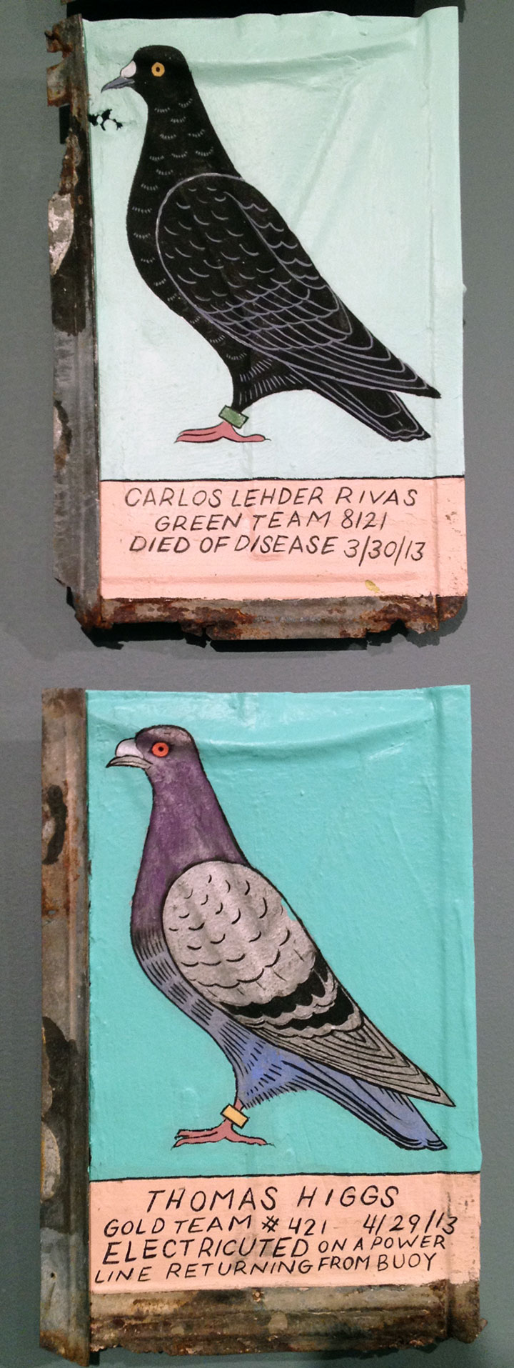 Pigeon paintings by Duke Riley